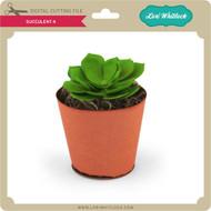 Succulent 4