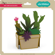 Box Card Succulents