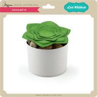 Succulent 10