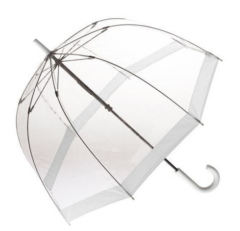 Clear with White Trim Umbrella