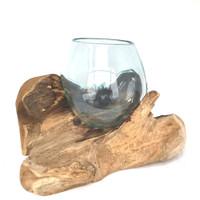 Glass Terrarium Molded on Driftwood (SS)