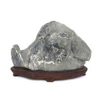 Suiseki Viewing Stone (VS16)
