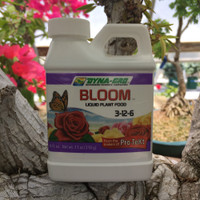 Bloom - Liquid Plant Food