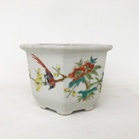 20 Yr Old Chinese Bonsai Pot (TK-824)