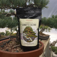 Conifer | Ready-To-Use Bonsai Soil (2 Quarts)