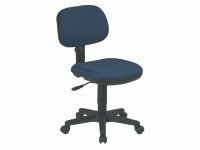 Deluxe Desk Chairs