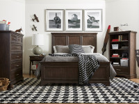 Dylan Panel Bed Queen - Tobacco