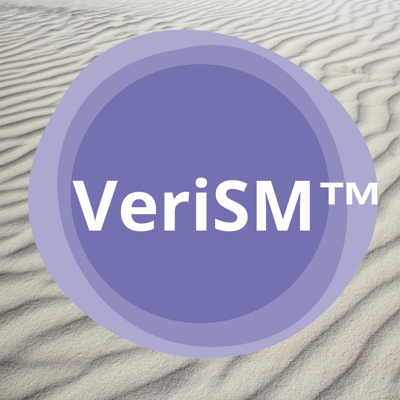 Register for VeriSM