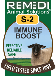 Sheep Immune Boost