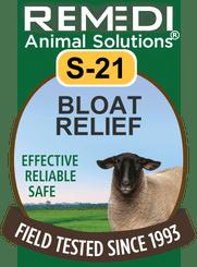 Bloat Relief in Sheep