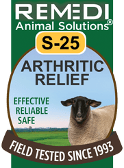 Arthritic Relief for Sheep