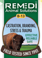 Castration, Branding, Stress & Trauma, B-13