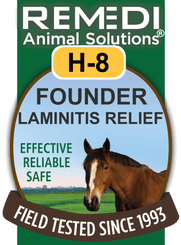 Founder Laminitis Relief for Horses, H-8