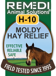 Moldy Hay Relief for Horses, H-10