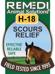Turbo Scours Relief for Horses, H-18