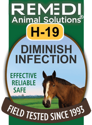 Turbo Diminish Infection for Horses, H-19