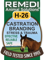 Castration, Branding, Stress & Trauma for Horses, H-26
