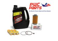 SeaDoo BRP Oil Change Kit RXP-X RXT-X GTX GTI 4-TEC NGK DCPR8E Filter O-Rings