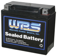 YAMAHA WaveRunner XLT XL GPR GP SUV SJ ALL WPS Sealed AGM Battery 12V16CLB
