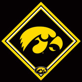 University of Iowa Cleaning Cloth