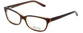 Ecru Designer Eyeglasses Beck-004 in Brown 53mm :: Progressive