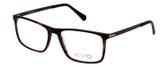 Vivid Designer Reading Eyeglasses 891 in Matte Demi/Amber/Brown 55 mm