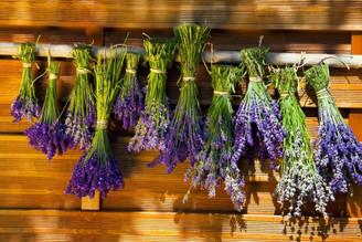 Lavender ~ 15 ml