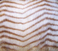 Herringbone Pattern Mink - Luxaire Faux Fur Pet Blanket | Lounger - Natural look and Luxuriously Soft - 35 X 47 Inches