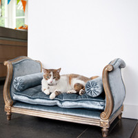Palace of Versailles Louis French Daybed for Pampered Dog or Cat - 30 Inch Bed with Cushion and Bolster Pillows - Metallic Silver Gilt Luxurie Furniture Finish NF15 with Tufted Pale Blue Velvet Upholstery 076