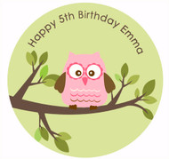 Pretty Owl on green background edible cake icing