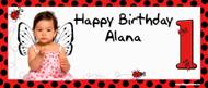 Party Banners - Ladybug Ladybird Birthday Banner