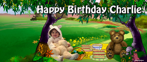 Personalized kids birthday party banner with photo - Teddy bears picnic theme. Sale online in Australia