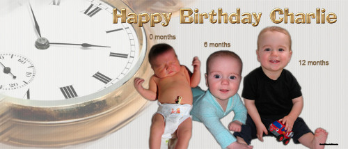 Personalized first birthday party banner with 3 photos - Time flies theme. Order online in Australia