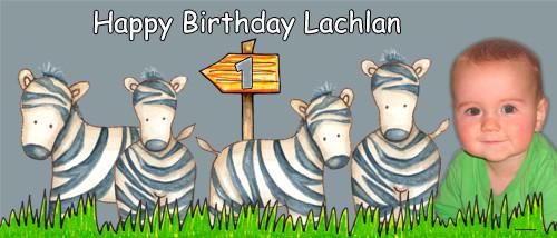 Personalized kids birthday party banner with photo - Wild zebra theme. Order online in Australia