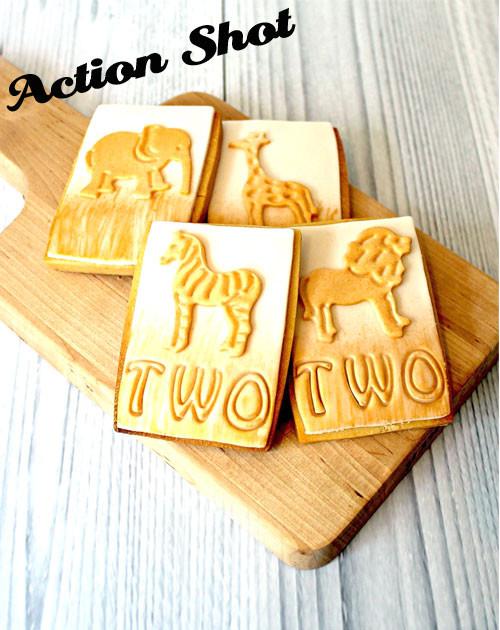 White wash Wood Photography Background