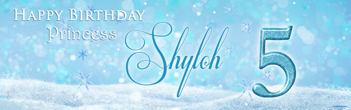 Disney Frozen Birthday Party Personalised Party Banners