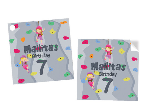 Girls Rock Climbing Party Personalised Square Stickers & Square Tags
