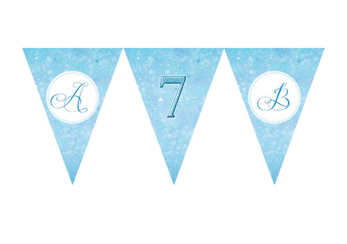 Frozen Birthday party personalised bunting flag decorations