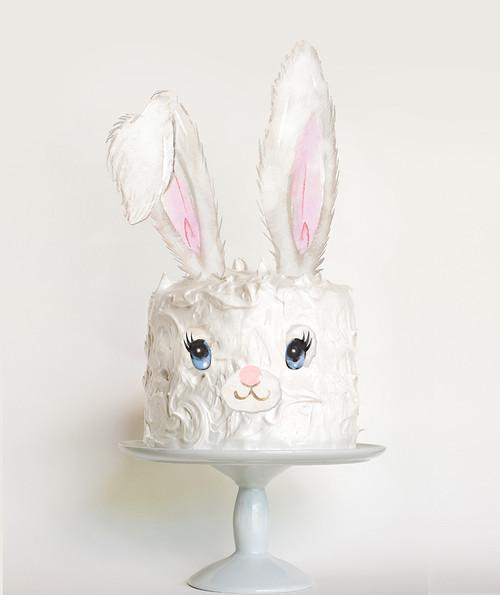 Easter Bunny DIY cake decorator kit