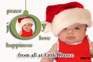Joy to the world themed custom Christmas Card
