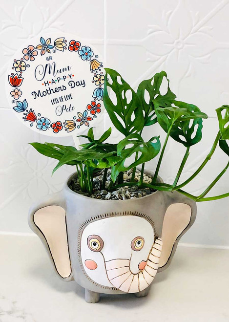 Personalised mothers day plant pot stick