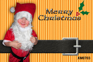 Personalised photo Christmas card for sale online - Holly theme