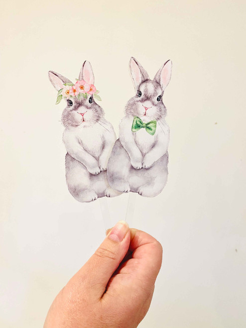 Boy & Girl Easter Bunny cake toppers
